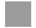icone-online